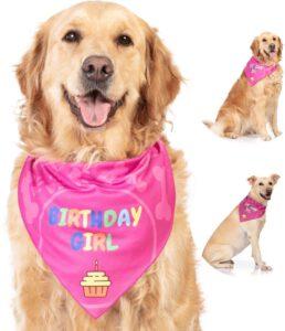 bandana verjaardag hond birthday