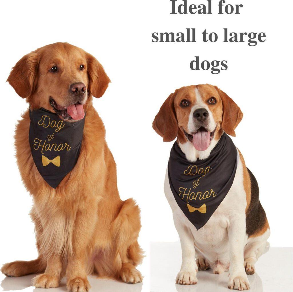 bandana hond verloving bruiloft cadeau origineel