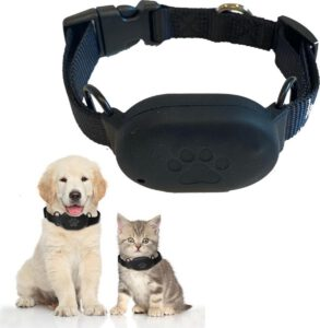 GPS tracker hond 1