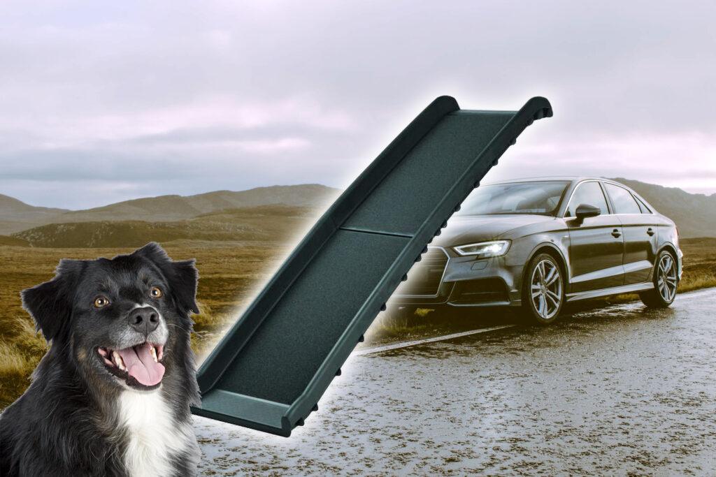 hondenloopplank foto