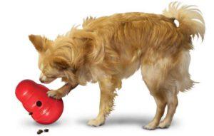 Het is belangrijk om je hond genoeg beweging te geven, maar ook voldoende mentale uitdaging. Voor sommige rassen is dit belangrijker dan andere rassen. Vooral slimme honden hebben hier veel behoefte aan. Gaat een hond zich vervelen? Dan kan hij namelijk probleemgedrag gaan vertonen. In dit artikel hebben we 10 leuke denkspelletjes voor honden op een rijtje gezet! Denkspelletjes variëren van makkelijk tot zeer uitdagend. We hebben spelletjes gekozen op basis van kwaliteit, merk, prijs, functionaliteit en (persoonlijke) ervaringen. Kong Wobbler Kong Snack Dispenser Wobbler We beginnen met een makkelijk denkspelletjes. De speeltjes van Kong zijn misschien wel één van de bekendste. Naast de standaard Kong, is er de Kong Wobbler. Deze kan gevuld worden met snoepjes of brokjes, waarna de hond ze eruit moet zien te krijgen. Het bovenste gedeelte is van de onderkant af te schroeven, zodat de Wobbler op een makkelijke manier gevuld kan worden. De onverwachte bewegingen die de Wobbler maakt houden het spel actief en uitdagend, zelfs voor de meer ervaren hond! De Wobbler is ook een leuk alternatief voor de gewone voerbak. Helemaal als je hond de brokken te snel opschrokt. Je hond moet op deze manier werken voor zijn eten en het is nog leuk ook! Hij doet graag zijn best om al dat lekkers eruit te krijgen. Het speeltje is FDA voedsel-goedgekeurd, vaatwasser bestendig en gemaakt van duurzaam plastic polymeer. Verkrijgbaar in meerdere maten, voor verschillende hondjes. Het product is sterk en gaat lang mee. De opening is wel wat klein, dus houdt daar rekening mee als je hem gaat vullen. Klik hier voor de meest recente prijs van deze Kong Wobbler. Woef-It Snuffelmat Grote Woef-it Snuffelmat Grijs-Roze Toen ik dit speeltje voor het eerst zag, vond ik het maar een vreemd ding. Maar wat heeft mijn hond hier veel plezier aan gehad, zeg! Ze gaf telkens zelf aan dat ze met het Snuffelmatje wilde spelen. Soms gooide ik haar brokjes erin, zodat ze die uit de snuffelmat kon eten in plaats v