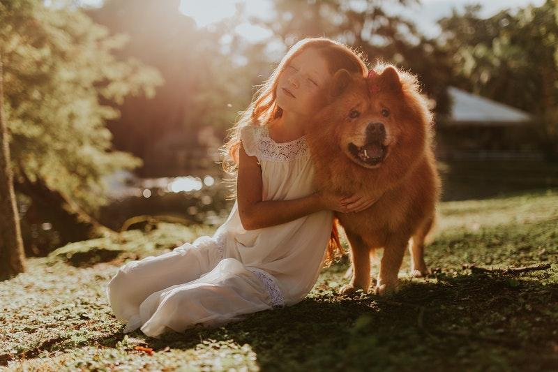 kind bijt hond